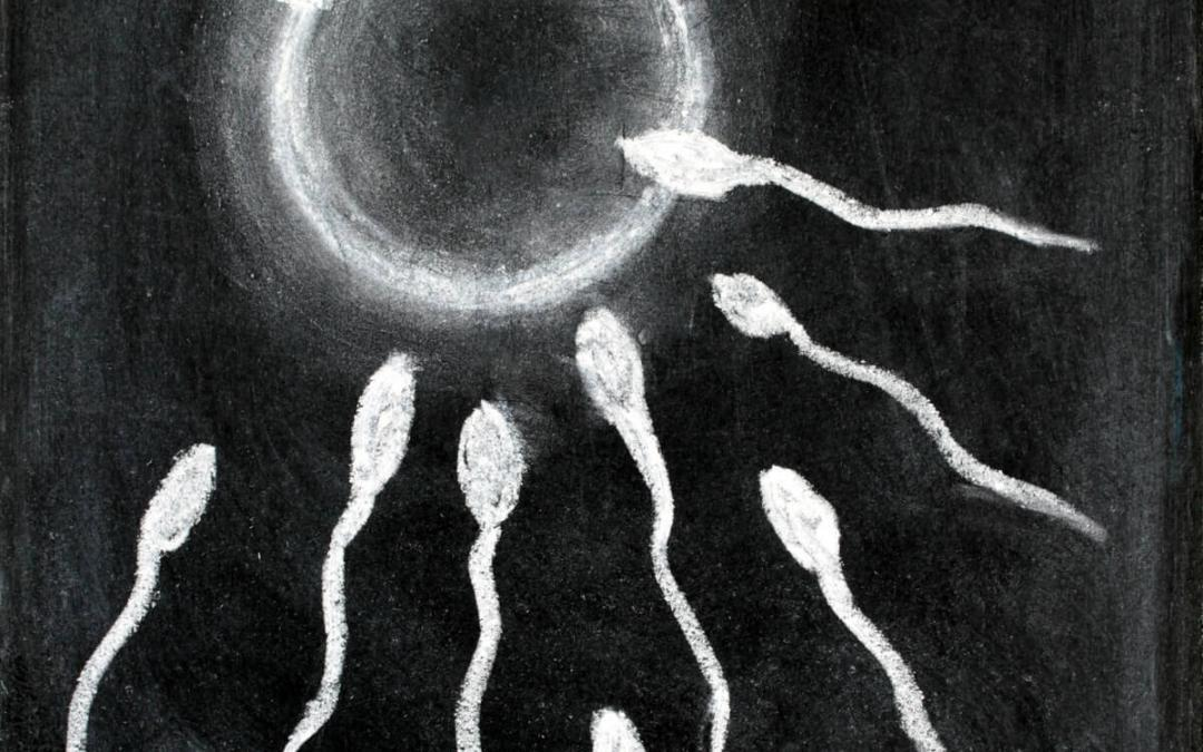 IVF is not the only fertility treatment